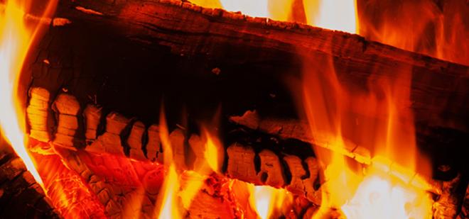 Essex Firewood | Firewood & Hardwood Logs For Sale | Colchester, Essex